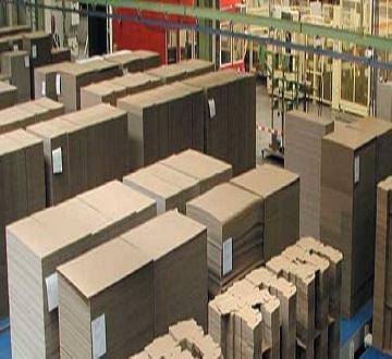 Băng tải | Dây Đai sử dụng trong ngành bao bì Kim Loại và Bao Bì Carton