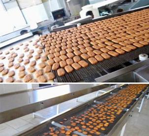 Băng tải dùng trong lò lướng bánh, chịu nhiệt cao