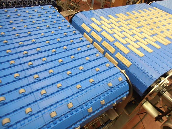băng chuyền nhựa trong ngành thực phẩm